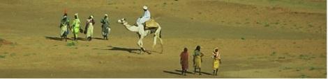 Tchad-paysage-1 (PMCT)